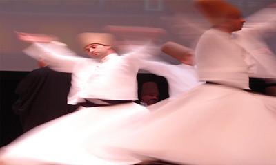 Sufi Detractors: Anti-Ibn Arabi Polemic in the Muslim World