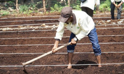 ICRS Hosted Clinic on Religion and Environmental Conservation